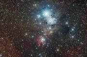 NGC2264 Cone Foxfire Christmas tree cluster