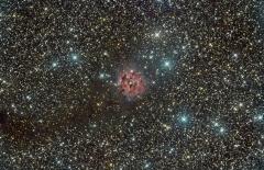 IC5146 Cocoon Nebulae